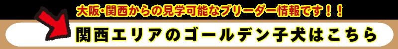 kansai_golden